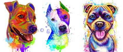 Staffordshire Bull Terrier Caricature