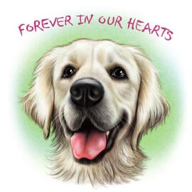 Dog Portrait - Dog Loss Gift, Dog Memorial Painting from Photos