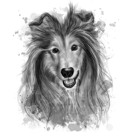 Rough Collie Portrait Painting from Photos in Graphite Style - example