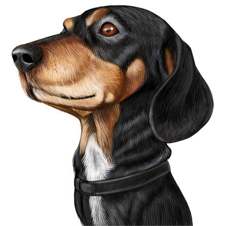 Dachshund Caricature Portrait Hand Drawn in Colored Style from Your Dog Photos - example
