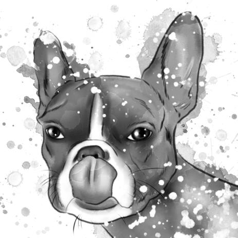 French Bulldog Caricature Portrait Cartoon in Head and Shoulders Black Lead Watercolour Style - example