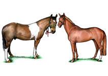 Oreiller pour animaux de compagnie de forme personnalisée example 3