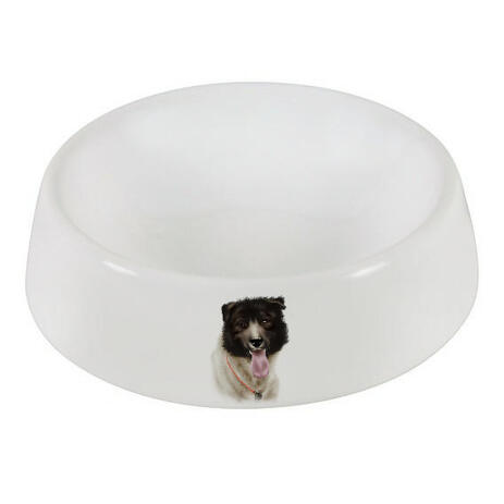 Dog Caricature Printed on Bowl - example