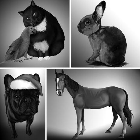 Black and White Portrait of Any Pet with Single Color Background - example