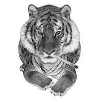 Мультяшный портрет тигра в черно-белом стиле по фотографиям
