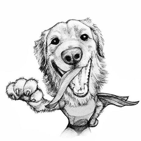 Your Dog or Cat as Custom Superhero Caricature - example