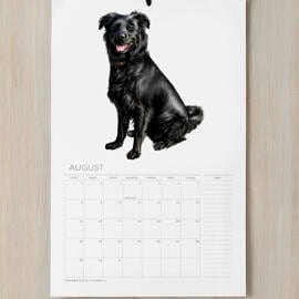 Dog Caricature Printed on Calendar