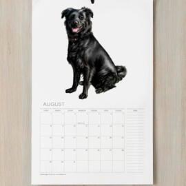 Dog Caricature Printed on Calendar