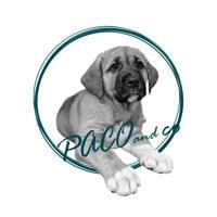 Caricatura del logo del ritratto dell'animale domestico dalla foto per avatar aziendale