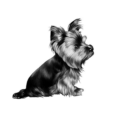 Full Body Yorkshire Terrier Cartoon Portrait from Photo in Black and White Style - example