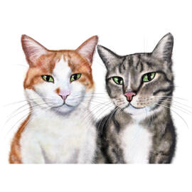 Custom Cat Portrait Caricature from Photo