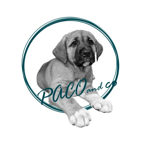 Pet Portrait Logo Caricature from Photo for Business Avatar - example