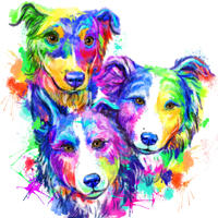 Gruppen-Border-Collie-Karikatur-Porträt im Regenbogen-Aquarell-Stil von Fotos