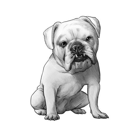 Hand Drawn Bulldog Portrait in Full Body Black and White Pencil Style from Photos - example