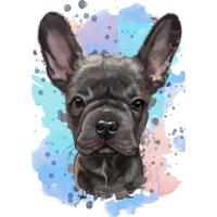 Söt fransk bulldog naturligt akvarellporträtt från foto med färgad bakgrund