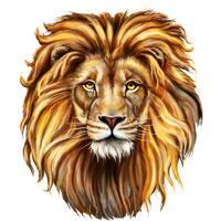 Портрет льва рисованной в цветном цифровом стиле