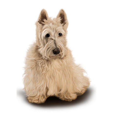 Scottish Terrier Portrait in Full Body Colored Style from Photos - example