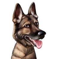 Hoved og skuldre schæferhund tegneserietegning fra foto i farve stil