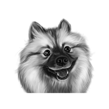 Spitz Cartoon Caricature in Black and White Digital Style from Photos - example