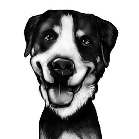 Bernese Mountain Dog Caricature in Black and White Style from Photo - example