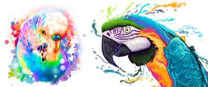 Watercolor Bird Portrait