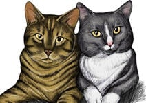 Pets Caricatures example 34