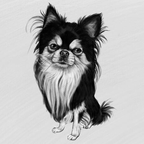 Full Body Chihuahua Black and White Portrait from Photos - example