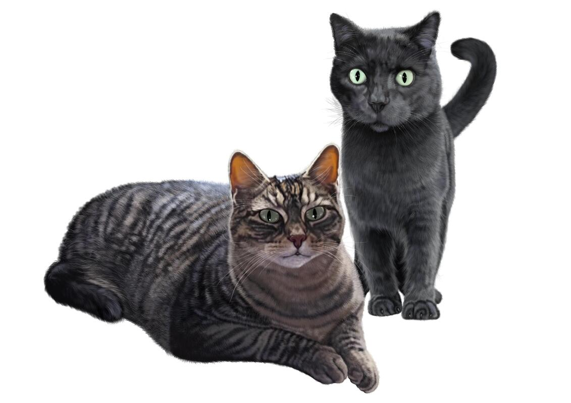 Katzen Karikatur