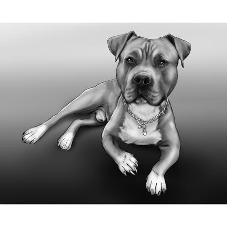Full Body Black and White Dog Portrait with Gray Background - example