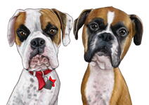 Pets Caricatures example 47