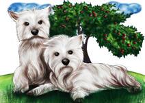 Oreiller pour animaux de compagnie de forme personnalisée example 12