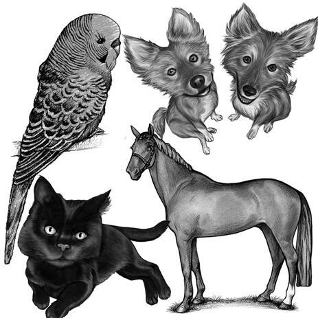 Jakýkoli portrét celého těla mazlíčka z fotografií v černobílém stylu - example