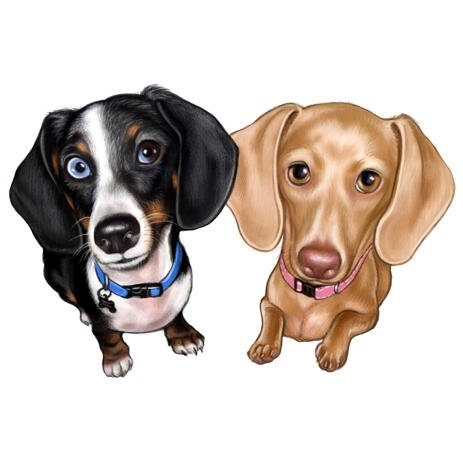 Couple of Dachshund Dogs Cartoon Portrait in Colored Style from Photos - example