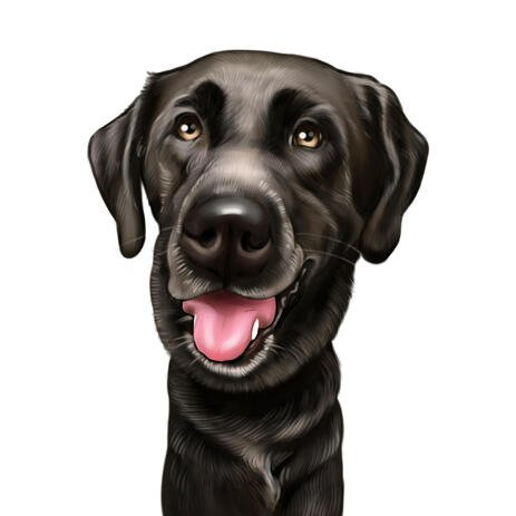 Custom Labrador Caricature Portrait in Head and Shoulders Color Style - example