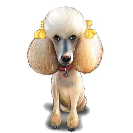 Full Body Poodle Caricature Portrait Hand Drawn in Color Style from Photo - example