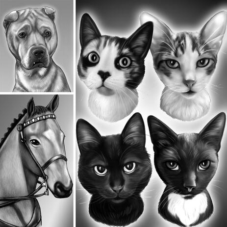 Black and White Portrait of Any Pet with Background - example