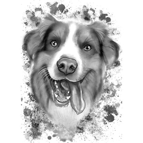 Australian Shepherd Caricature Portrait in Grayscale Watercolor Style from Photos - example