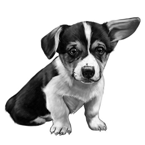 Corgi Cartoon Portrait in Black and White Style from Photo for Pet Lover Gift - example