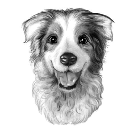 Cute Australian Shepherd Dog Caricature in Black and White Style from Photo - example