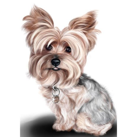 Yorkshire Terrier Caricature Portrait in Full Body Colored Style from Photo - example