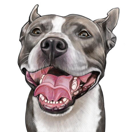 Dog Portrait Caricature from Photo in Colored Style - example