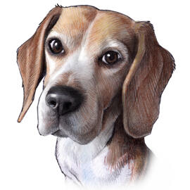 Dog Portrait Caricature from Photo in Colored Style