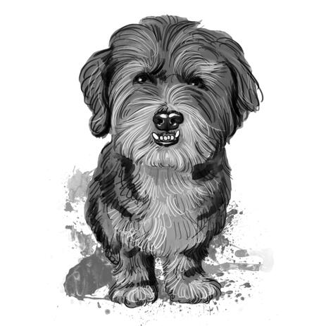 Watercolor Black and White Full Body Bolognese Toy Dog Portrayal Painting Gift - example